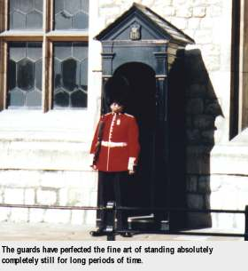 [The guards have perfected the fine art of standing absolutely completely still for long periods of time.]